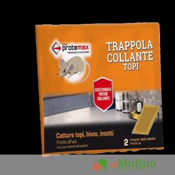 - TAVOLETTE VISCHIO 14X19 PZ.2
