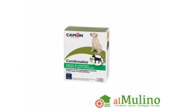 CAMON SPA - CAMON CONDROSALUS 60CPR ++++